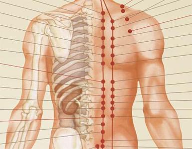 Back Massage Range